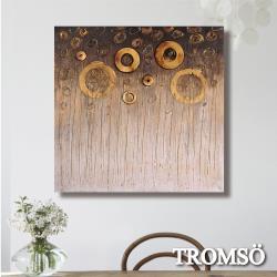 TROMSO時尚無框畫抽象藝術-煙花燦爛W427