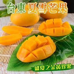【禾鴻】盛夏之黃金珍果-台東夏雪芒果淨重4斤x3盒
