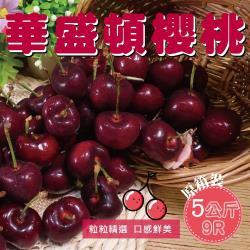 【坤田水果】西北華盛頓9R櫻桃 (單箱5公斤)*1箱