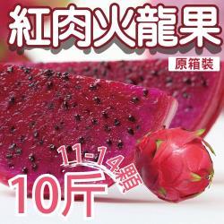 【坤田水果】紅肉火龍果 (單箱10斤 11-14顆)*2箱