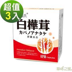 草本之家-白樺茸菇膠囊120粒X3盒
