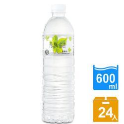DRINK WATER丹楓之水 麥飯石礦泉水600ml 24瓶x2箱