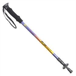RHINO 犀牛彩繪登山杖-紫黃彩繪
